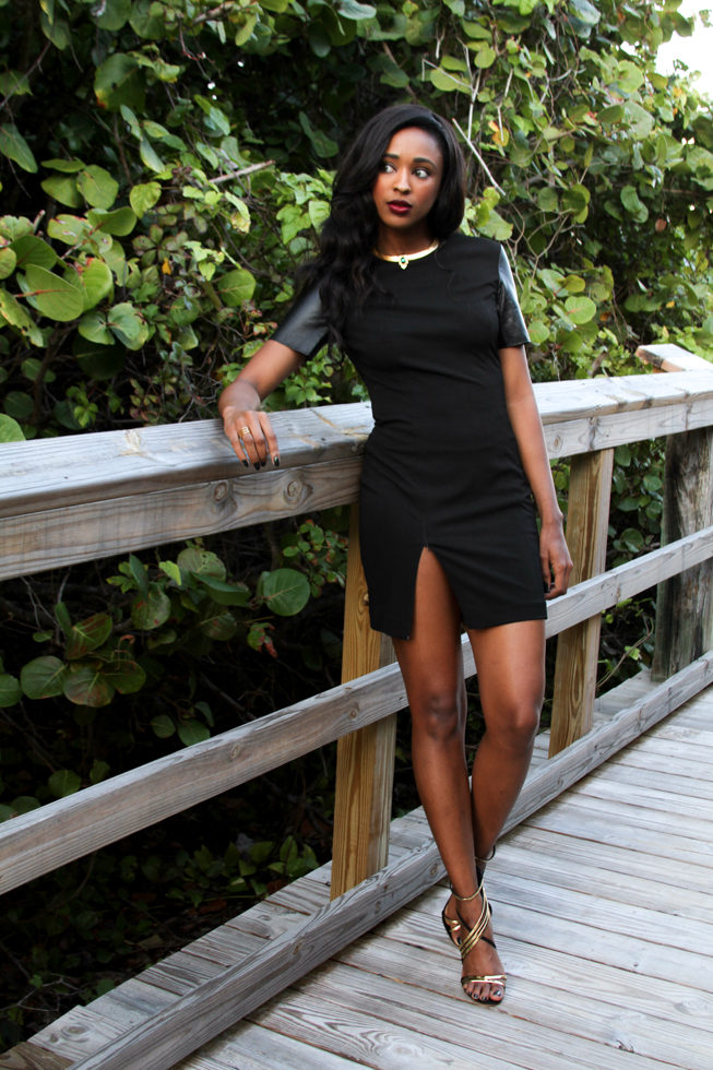 Leather Sleeved Dress