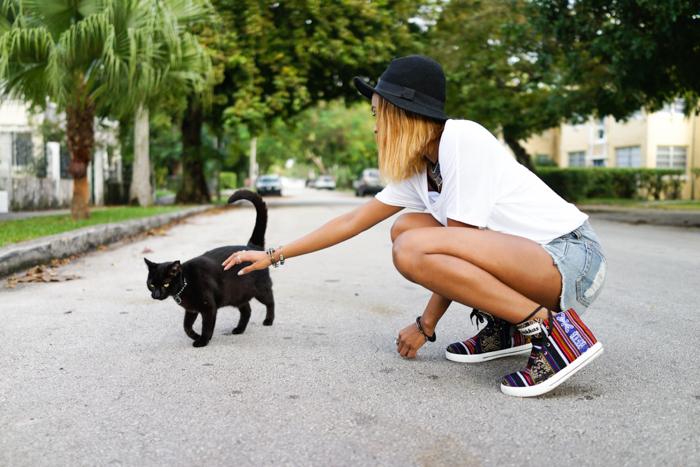 Miami-Fashion-Blog-Stray-Cat
